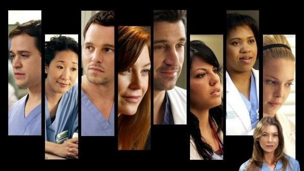 Grey's Anatomy  XV (342)
