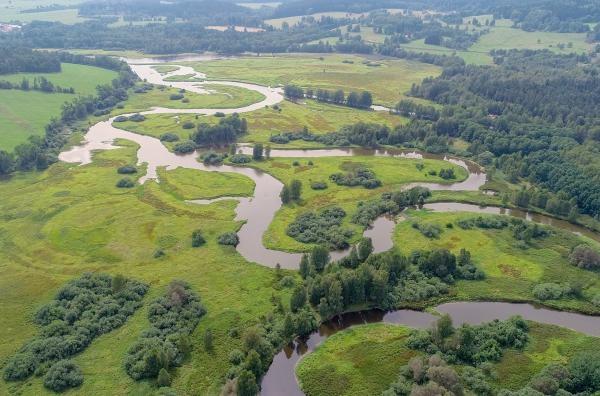 Vltava: Zlatá řeka