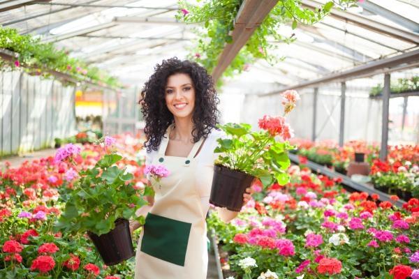 Sleduj online zahradničení, zájmy Krásy přírody na Hobby TV!